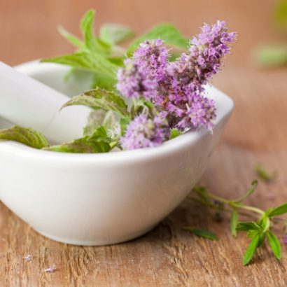 health-wellness_balanced-living_wellness-therapies_herbal-medicine_1440x1080_184356984-1024x768